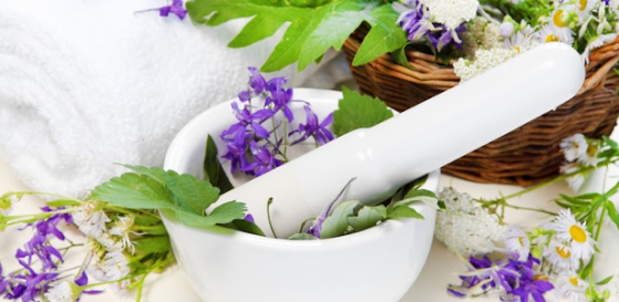 The Pros and Cons of Herbal Medications